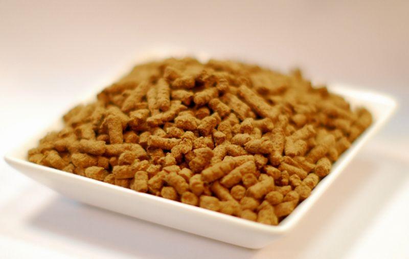 画像1: ウルトラプレミアム コンプリテスト 全犬種用小粒 1kg