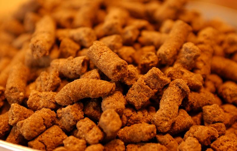 画像1: ウルトラプレミアム 全犬種用大粒 1kg